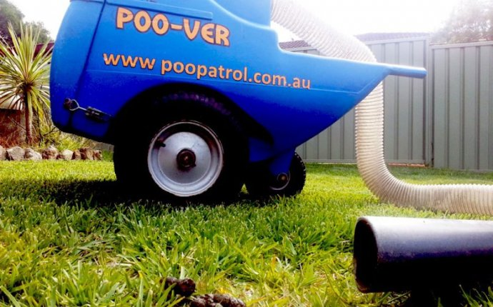 Inventive But Wacky Aussie Business Ideas That Actually Work
